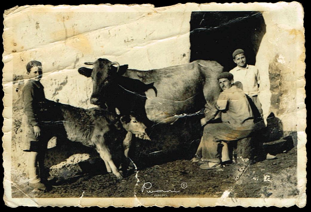 menorquinas-familia