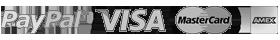 Logo SSL